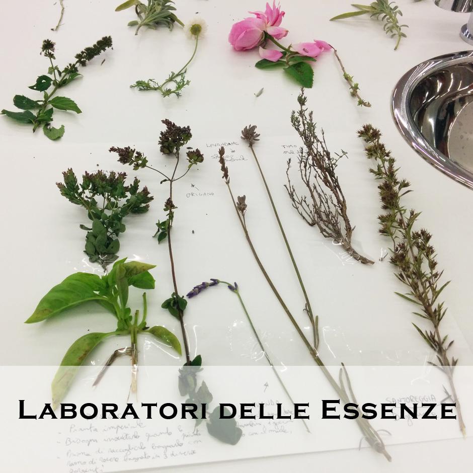 Laboratori essenze